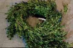 Pine Rope 25' Boxwood